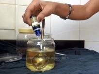 Adding Lavender Essential Oil