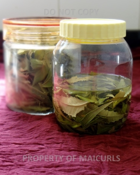 Infusing Neem Leaves